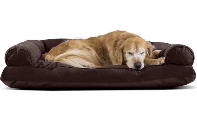 Furhaven Quilted Orthopedic Living Room Sofa Dog Bed