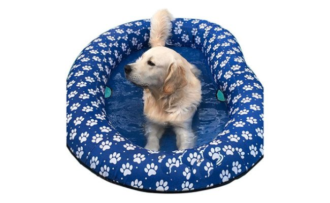 Ginkago Inflatable Pool Float for Dogs