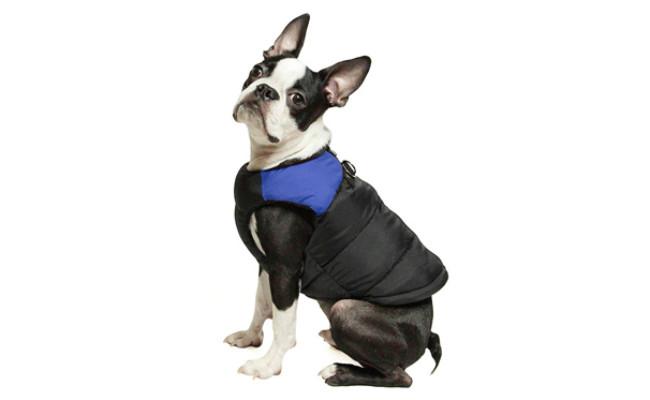 Gooby Padded Dog Coat