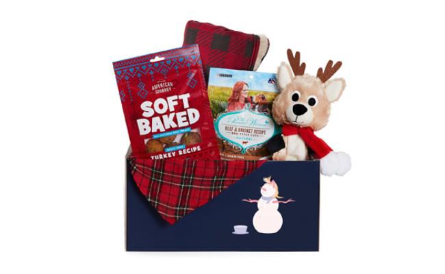 Goody Box Holiday Toys