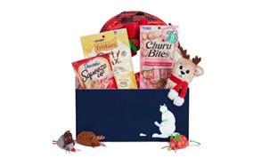 Goody Box Holiday Toys & Treats for Cats