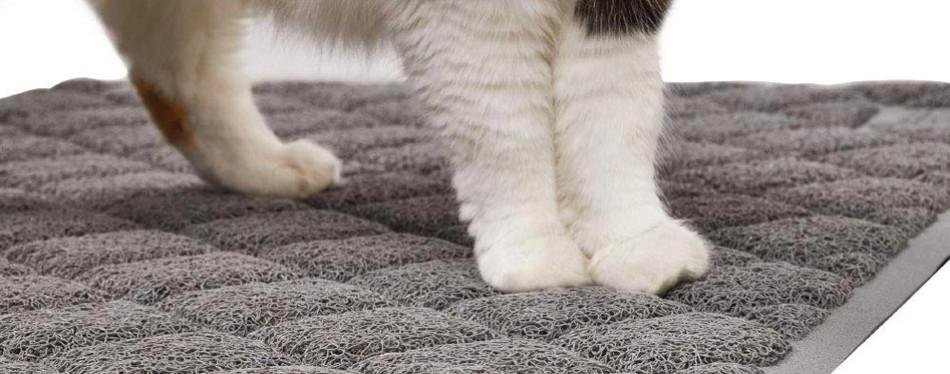 The Best Cat Litter Mats Review In 2019 My Pet Needs That