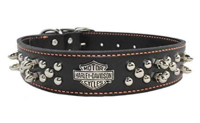 HARLEY-DAVIDSON Spiked Leather Dog Collar