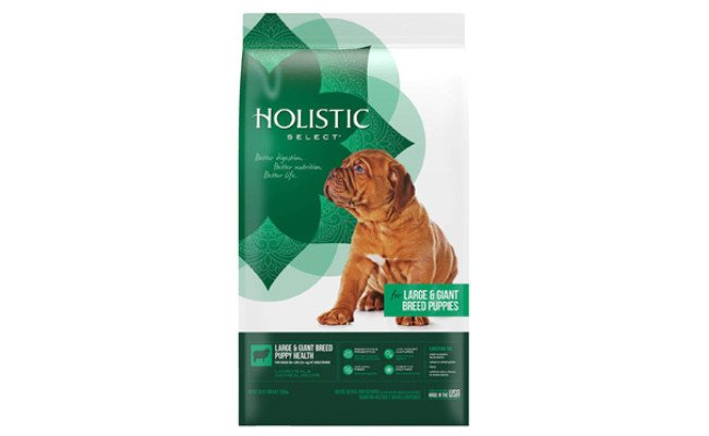 Holistic Select Health Lamb Meal & Oatmeal Dry Dog Food