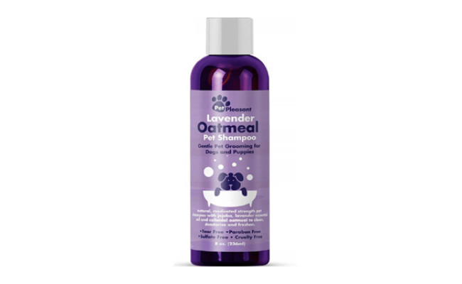Honeydew Colloidal Oatmeal Dog Shampoo