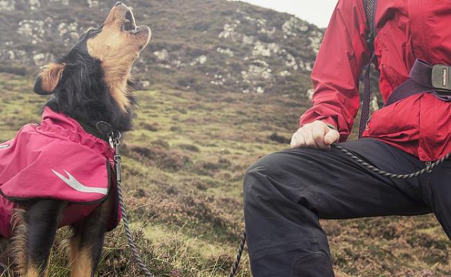 Hurtta Torrent Coat for Dogs