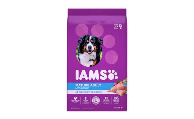 IAMS Senior Dry Dog Food