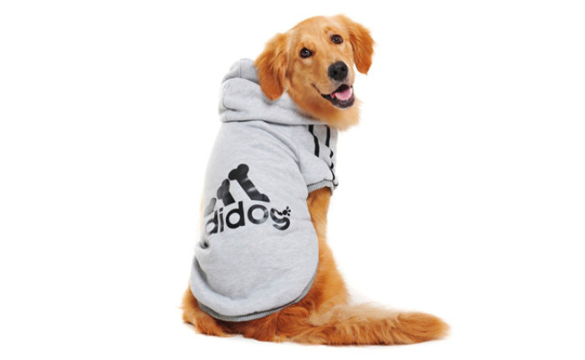 Idepet Cotton Adidog Large Dog Hoddie