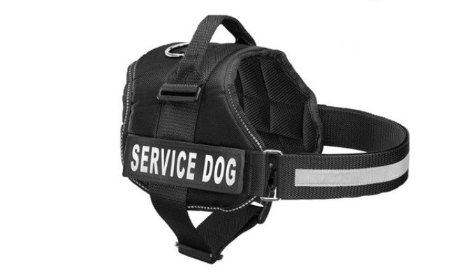 Industrial Puppy Service Dog Harness