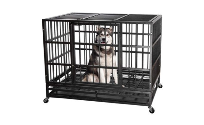 Itori Heavy Duty Metal Dog Crate