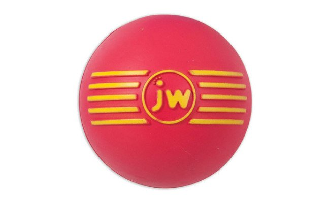 JW Pet Ball Rubber Dog Toy