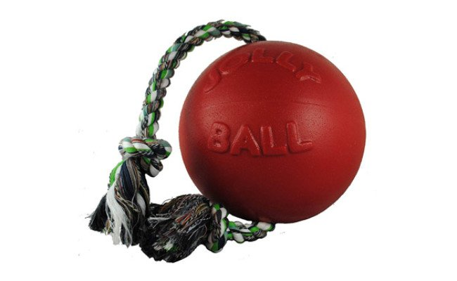 Jolly Pets Dog Ball
