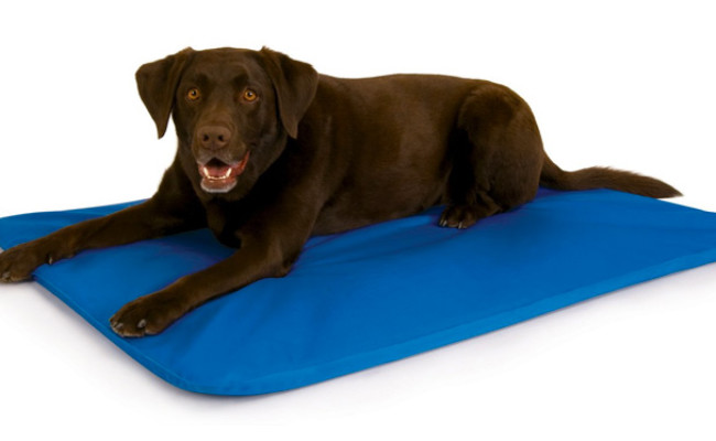K&H Pet Products Cooling Dog Bed