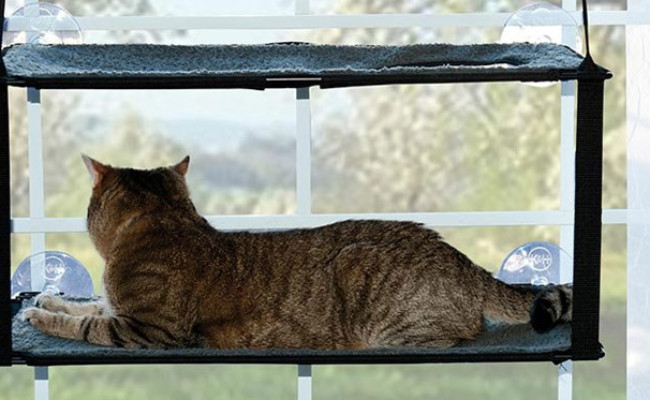 K&H Pet Products Window Mount Kitty Sill