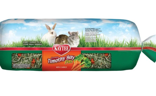 Kaytee Timothy Hay Plus with Carrots for Guinea Pigs