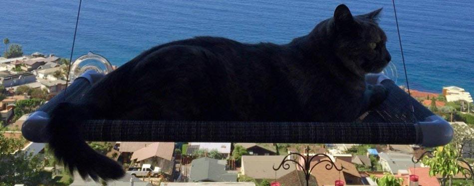 Kitty Cot Original Cat Window Perch