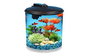 Koller Products AquaView 2-Gallon Goldish Tank
