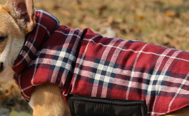 Kuoser Plaid Dog Sweater