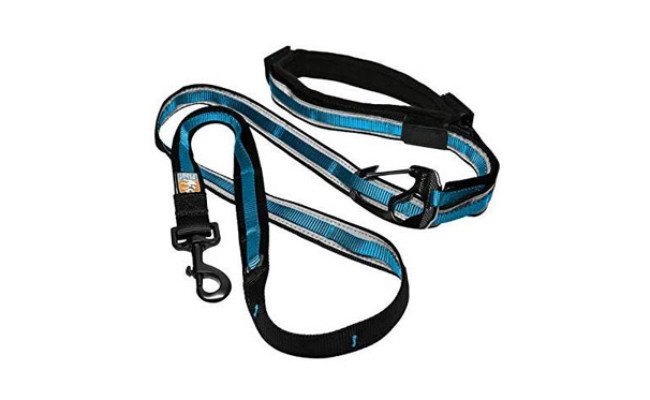 Kurgo Hands Free Dog Leash