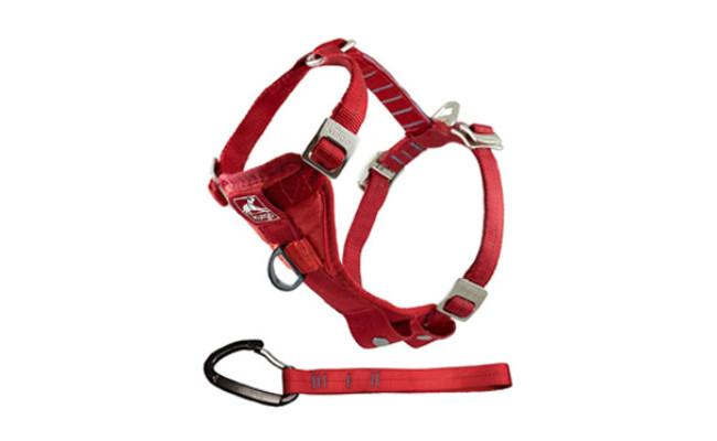 Kurgo Tru-Fit Enhanced Strength Dog Harness