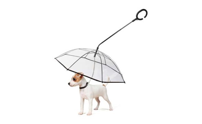 LESYPET Dog Umbrella with Leash