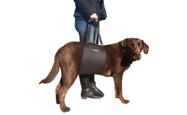 Labra Veterinarian Approved Dog Lift Harness
