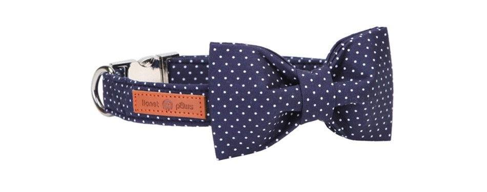 Lionet Paws Cat Collar with Bowtie