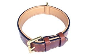 Luxury Real Leather Padded Dog Collar by Soft Touch Collars