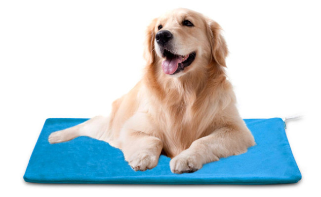 MARUNDA Dog Electric Heating Pad