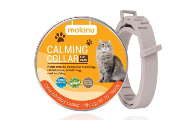 MOLANU Cat Calming Collar for Cats