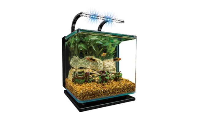 MarineLand Contour Glass Goldfish Tank