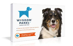 Mars Veterinary Wisdom Panel Dog DNA Test