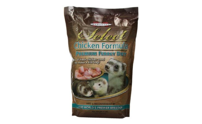 Marshall Pet Products Chicken Formula Ferret Food