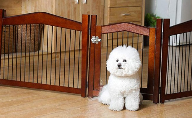 Merry 2-in-1 Configurable Dog Crate End Table