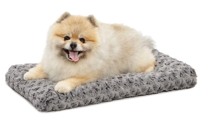 MidWest Homes Deluxe Dog Beds