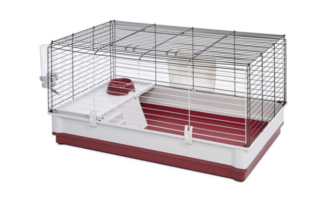 MidWest Homes for Rabbit
