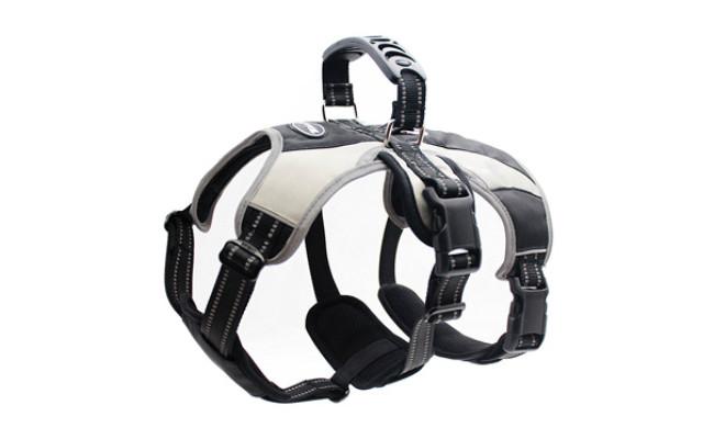 Mihachi Secure Dog Lift Harness