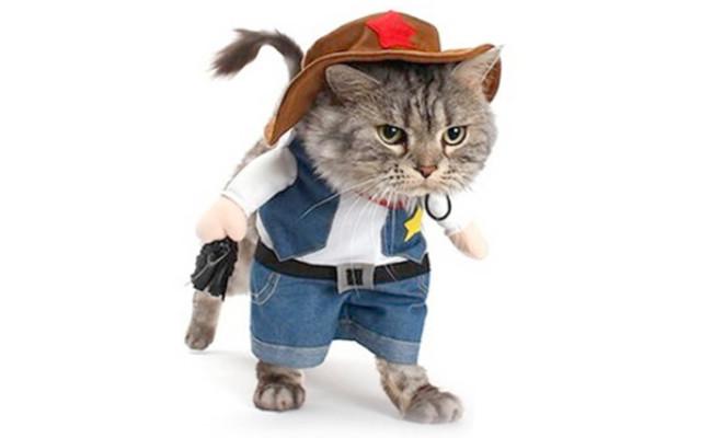 Mikayoo Pet Cowboy Cat Costume
