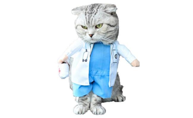 Mikayoo Cat Halloween Costume Doctor