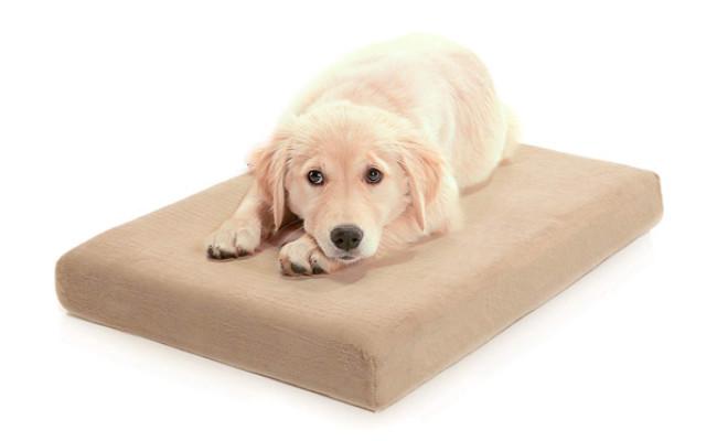 Milliard Waterproof Dog Bed