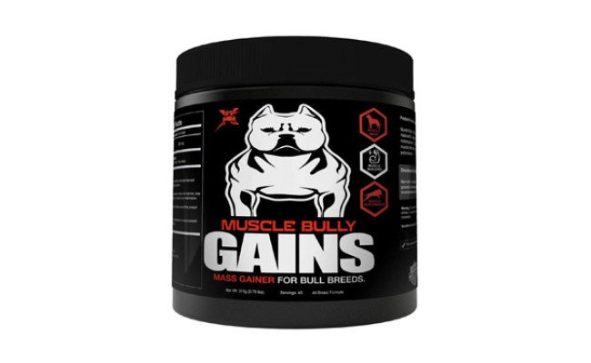 Muscle Bully Gains Mass Weight Gainer