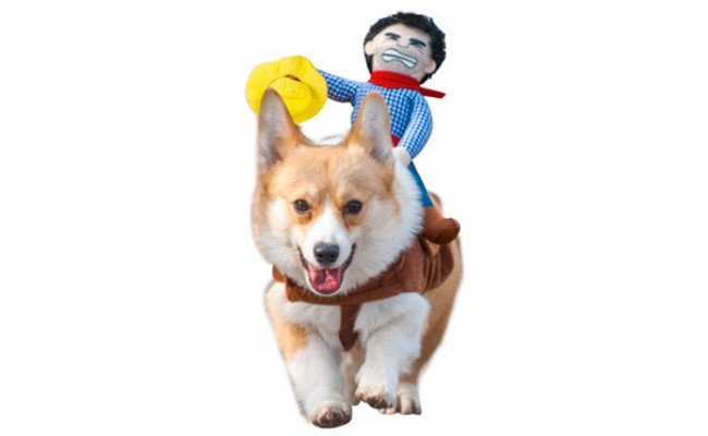 NACOCO-Cowboy Rider Halloween Day Pet Costume