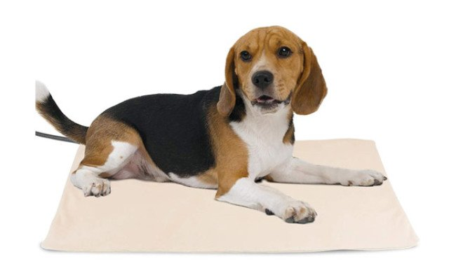 NICREW Pet Heating Pad for Dogs