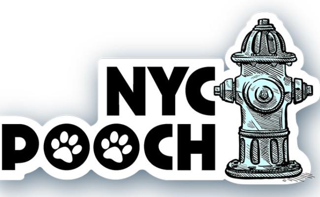 NYC Pooch