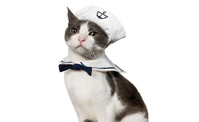 Namsan Cat Sailor Costume