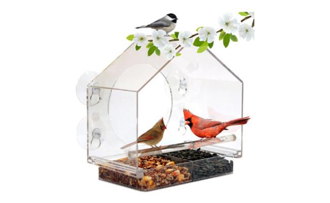 Nature Anywhere Window Bird House Feeder