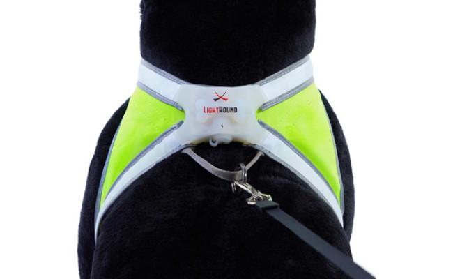 Noxgear Reflective Dog Harness
