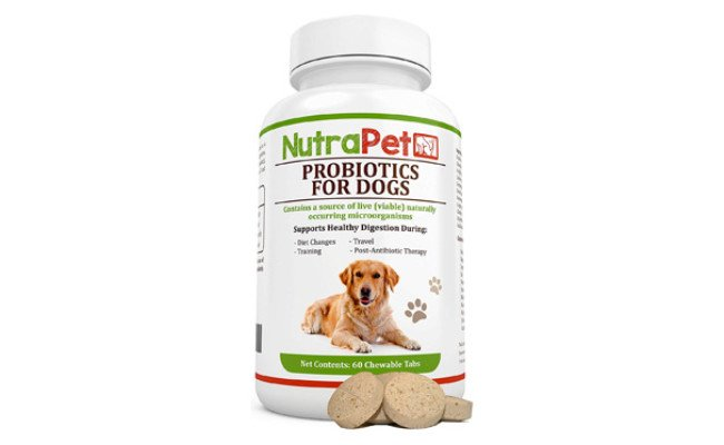 NutraPet Probiotics for Dogs