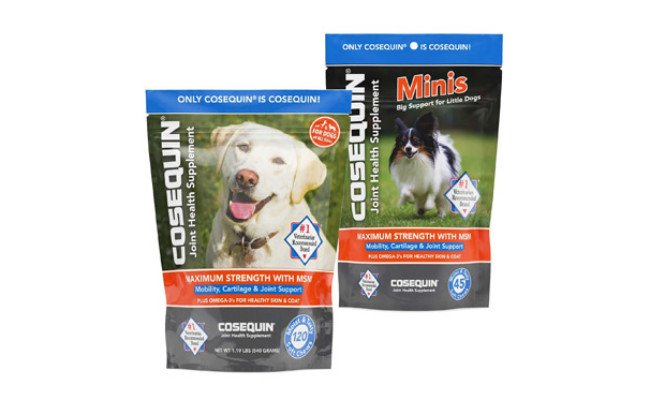 Nutramax Cosequin Minis Max Strength with MSM plus Omega-3s