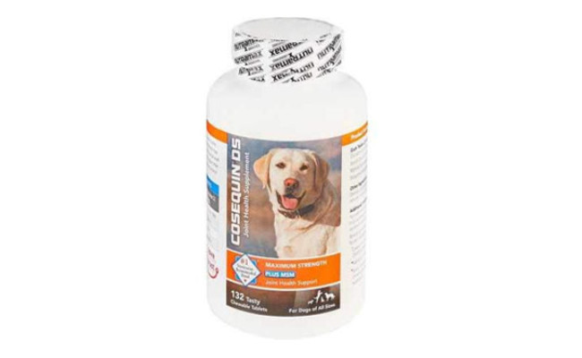 Nutramax Laboratories Dog Joint Supplement